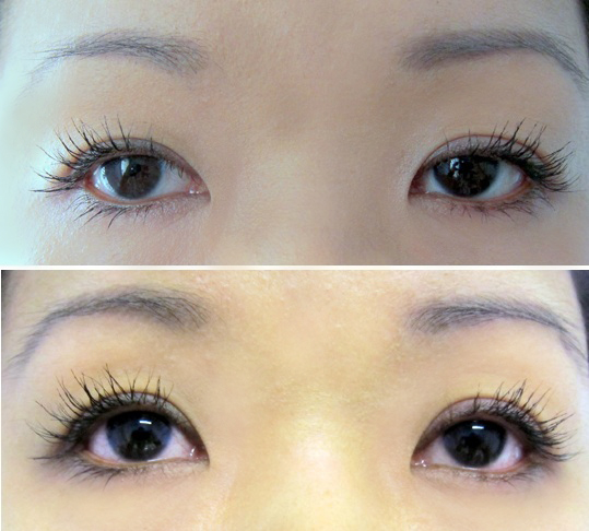 b6f648594cb My lashes above are from the morning and the lashes below are more than 10  hours of wearing the mascaras throughout the day. I can see L'Oreal  smudging a ...