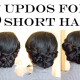 LaBelleMel_5_Updos_Short_Hair_1