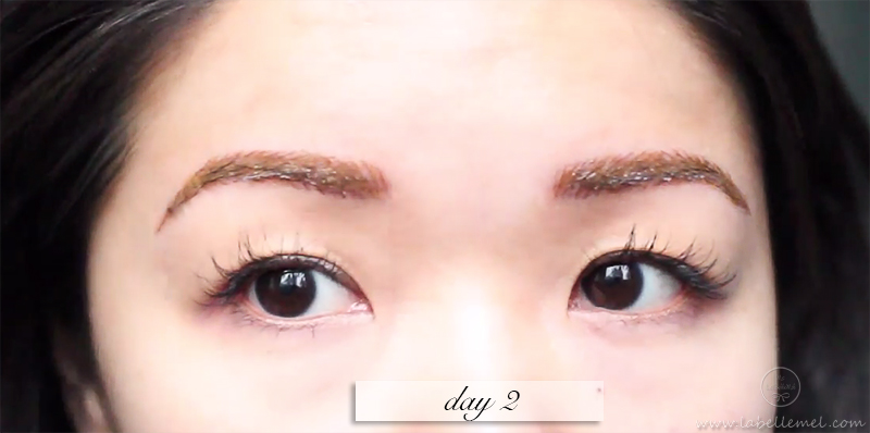 LaBelleMel_Permanent_Brow_Makeup_3_day2brows