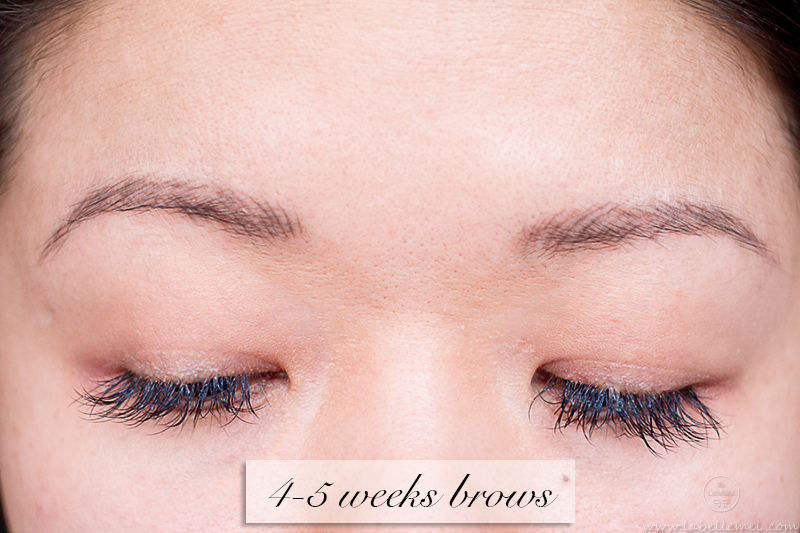 LaBelleMel_Permanent_Brow_Makeup_6_4-5weekbrows